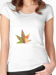 The colourful Sugargum leaf Women's Fitted Scoop T-Shirt