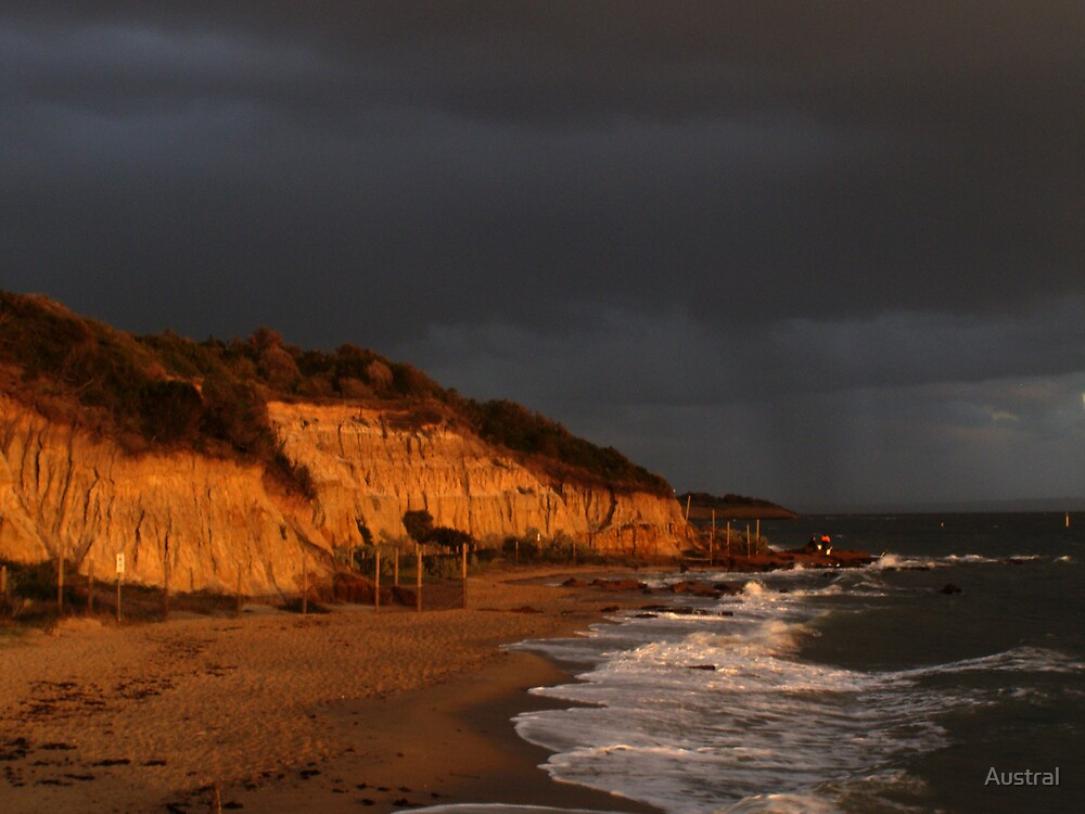 Black Rock Beach by Austral