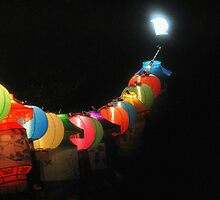 Chinese lanterns by sealander