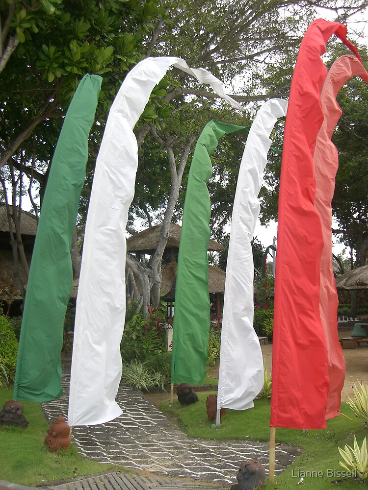 Flags in the wind by Lianne Bissell