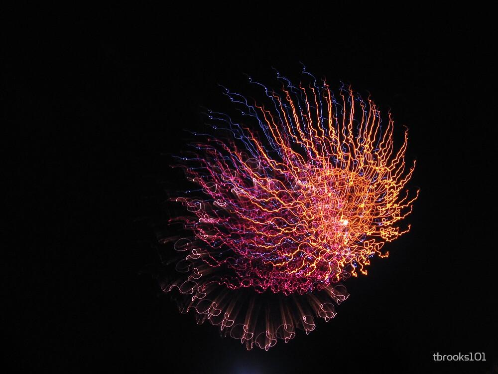 Jellyfish by tbrooks101