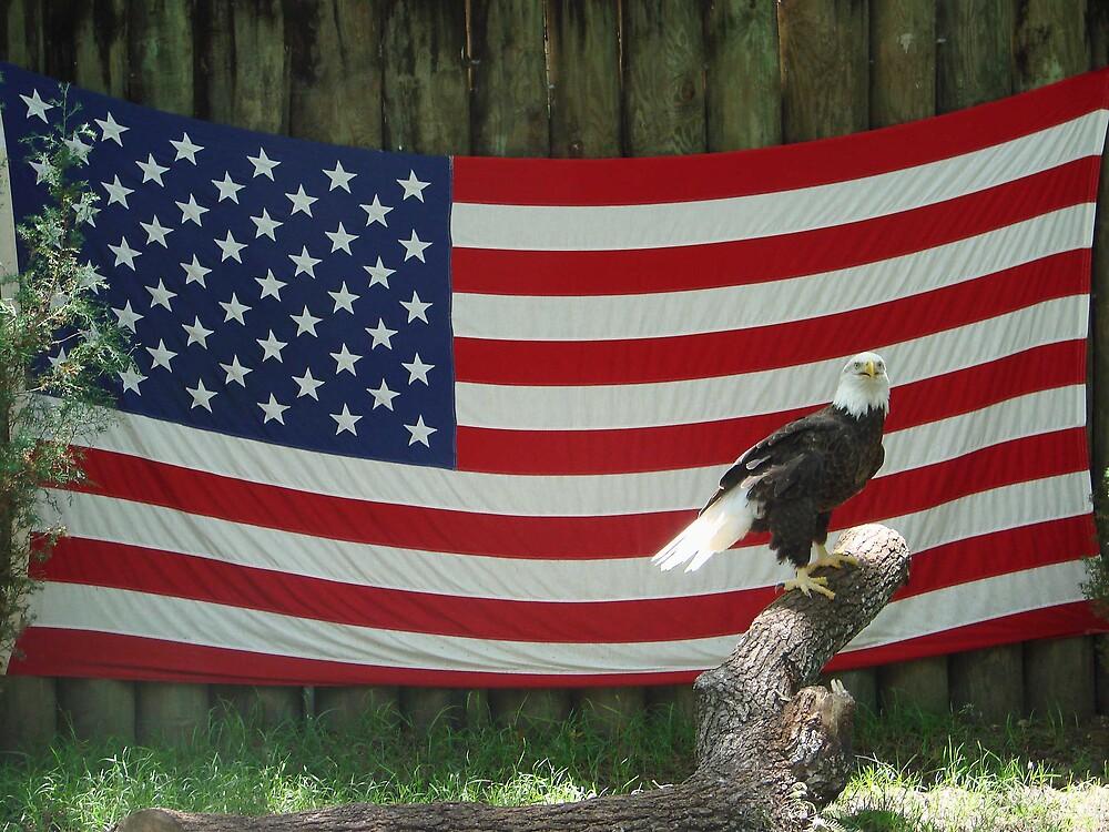 God Bless America by jhauta94