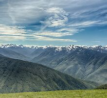 Hurricane Ridge by yellocoyote