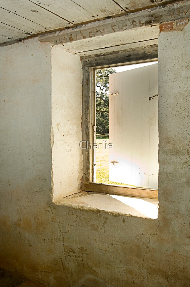 Basement Window 2 by Charlie