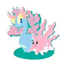 Corsola and Amaura in Spring Photographic Print