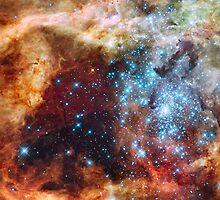 Doradus Nebula, Hubble Space Telescope Image by Barry  Jones