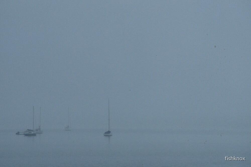 Misty yachts over St. Kilda marine by fishknox