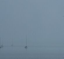 Misty yachts over St. Kilda marine by fishknox