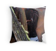 I Remember When I was Young! Throw Pillow