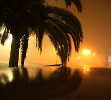 Misty night by Sean Diamond