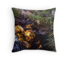 Canopy Light Throw Pillow