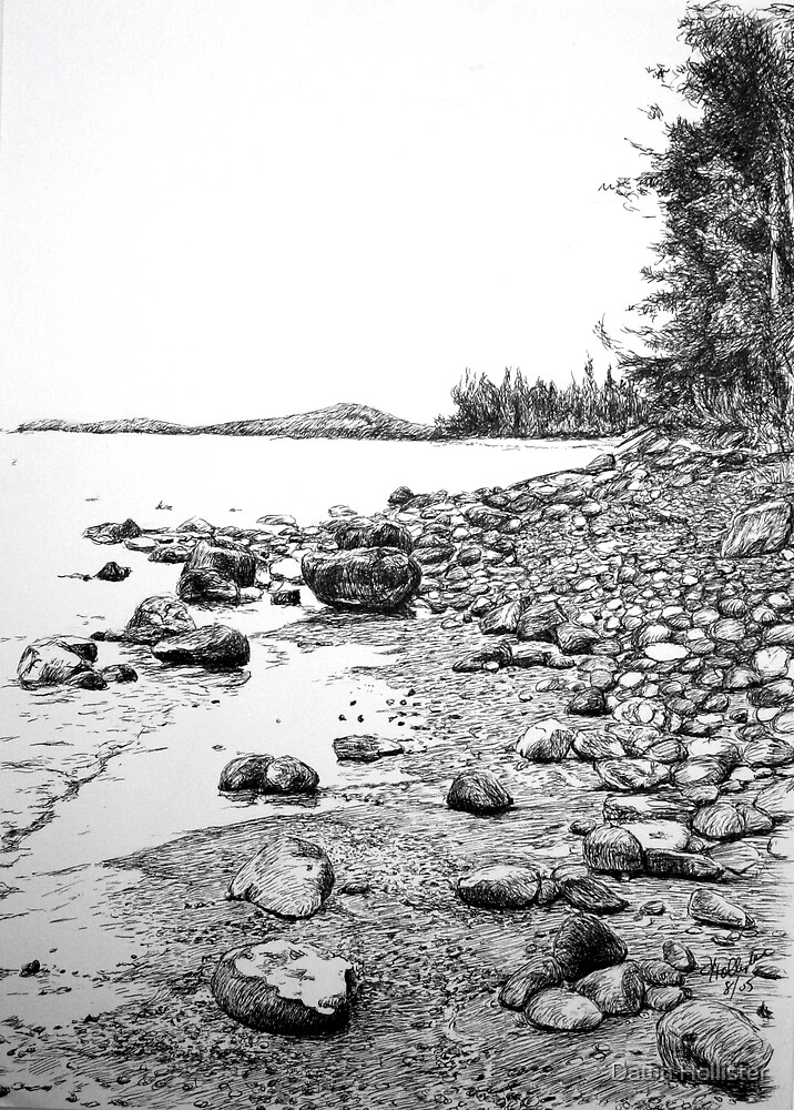 Southern Shore by Dawn Hollister