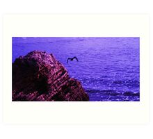 Sea Rock Bird Art Print