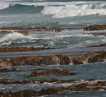 Rocky Coast by Brenton James