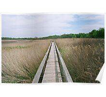 Marsh Boardwalk Poster