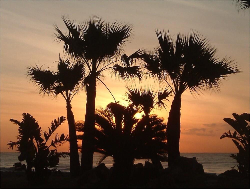 Sunrise by STUWOODS