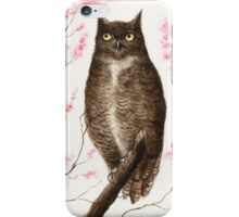Spring Owl iPhone Case/Skin