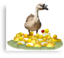 Back to School, my little rubber duckies! Canvas Print