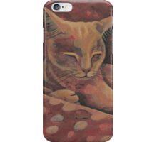 catnap iPhone Case/Skin