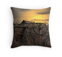 The Old Gate ~ Summer Lake Barn ~ Throw Pillow