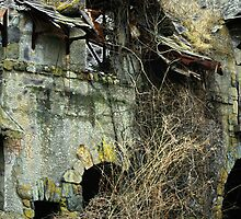Bretton Point Abandoned by robbucophotography