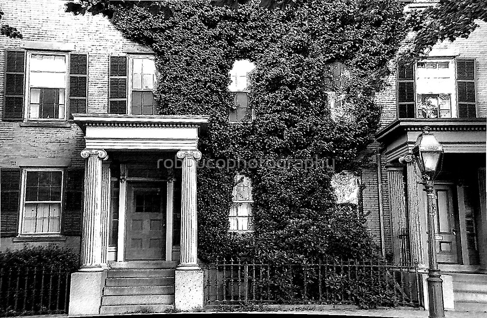 Ivy on Benefit Street by robbucophotography