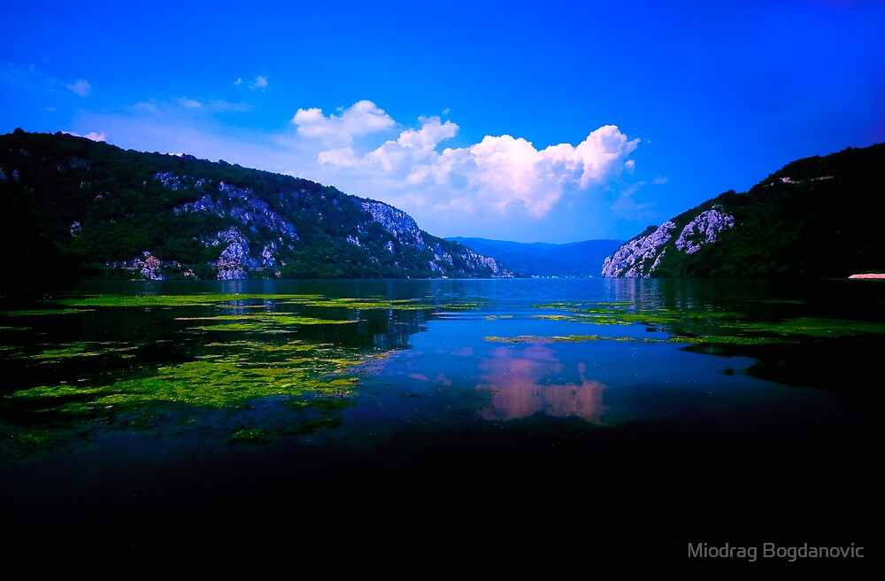 Beautiful Danube by Miodrag Bogdanovic