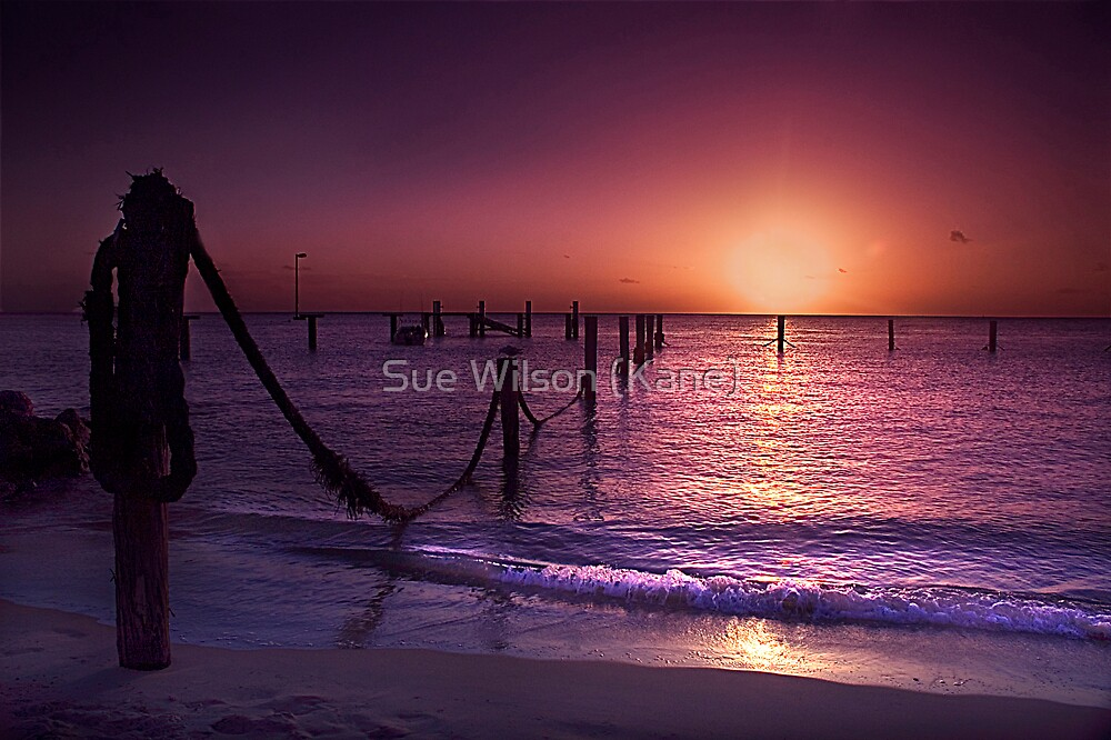 Setting Sun by Sue Wilson (Kane)