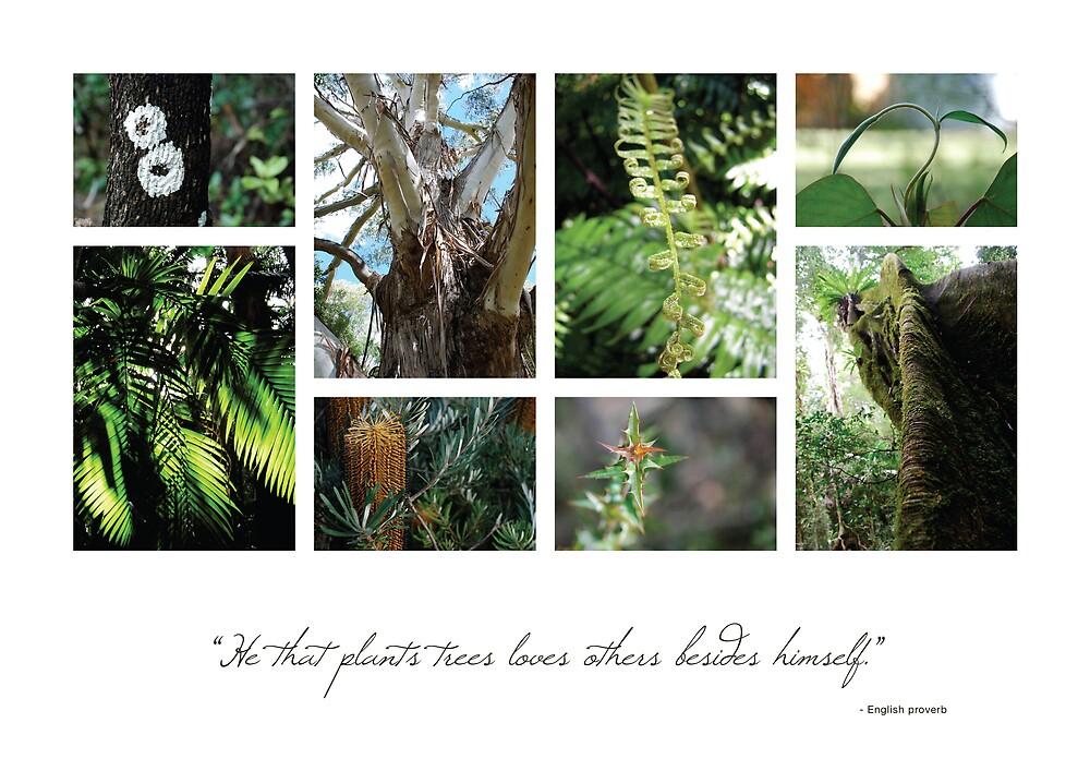 Trees 1 by Hazel Wallace