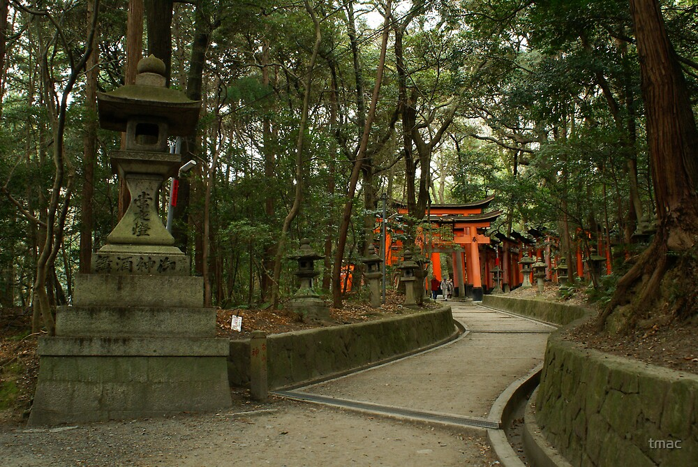 Japanese Arches in the Forest by tmac
