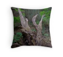 another nice picture from Glentress Forest Throw Pillow
