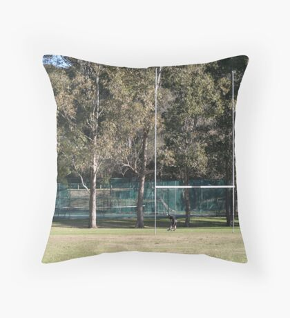 To make it high enough, straight enough and send it straight between the posts.... Throw Pillow