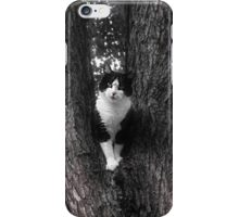 Black and White Rescue  Cat Posing in Tree iPhone Case/Skin