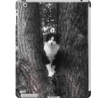 Black and White Rescue  Cat Posing in Tree iPad Case/Skin