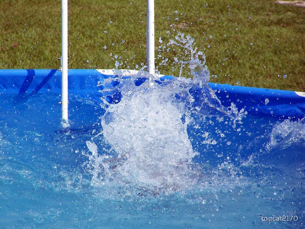 splash by tomcat2170