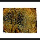 Tree of Knowledge by Lucinda Jones