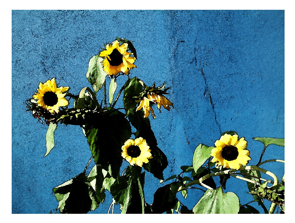 SUN FLOWERS by Tipptoggy