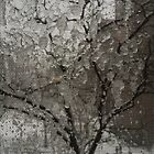 Ice on Window Screen by Christine  Wilson