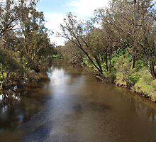 A River in Pinjarra by kalaryder