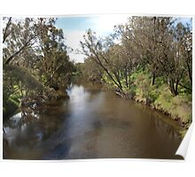 A River in Pinjarra Poster