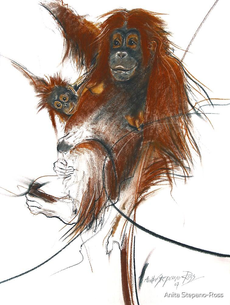 primate by Anita Stepano-Ross