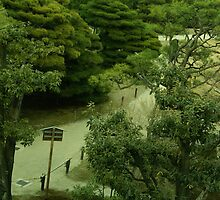 Japan - A Path Below 1 by tmac