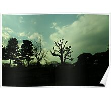 Japan - Almost Silhouetted Wall and Trees Poster