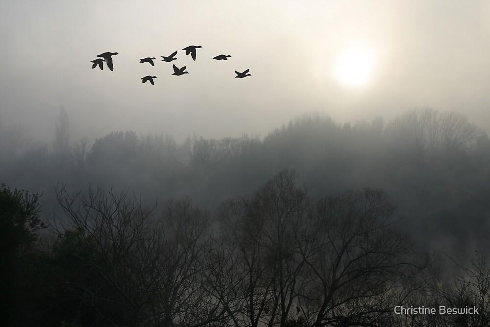 Misty morning on South Esk by Christine Beswick