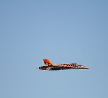 Canadian F16 replica by Paul Barber