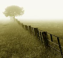 The Fence by Hans Kawitzki