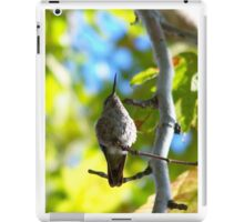 A Hummingbirds prayer for the planet iPad Case/Skin