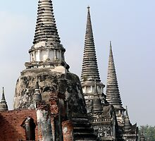 Temples in Ayutthaya by siegephotos
