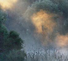 Sun Dragon in the Mist by nadine henley