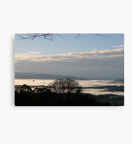 Culraven in the morning Canvas Print